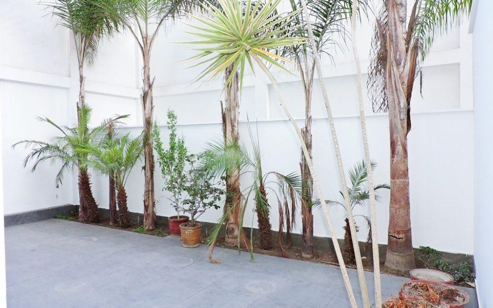 Alquiler San Isidro Dpto. Sin Muebles, 2 Dormitorios, Patio Grande, Primer Piso